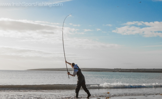 Colin Carey lets one fly at Ventry, Co. Kerry