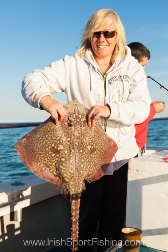 12.5lb Thornback Ray, 'The Brazen Hussy', Courtown