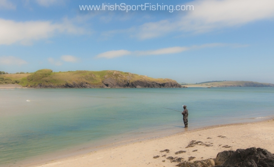Clonakilty Fishing