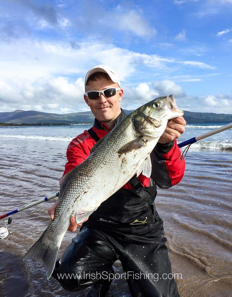 bass fishing ireland | Irish Sport Fishing